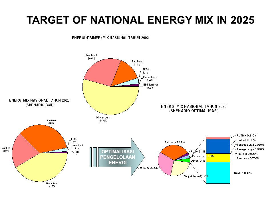TARGET OF NATIONAL ENERGY MIX IN 2025