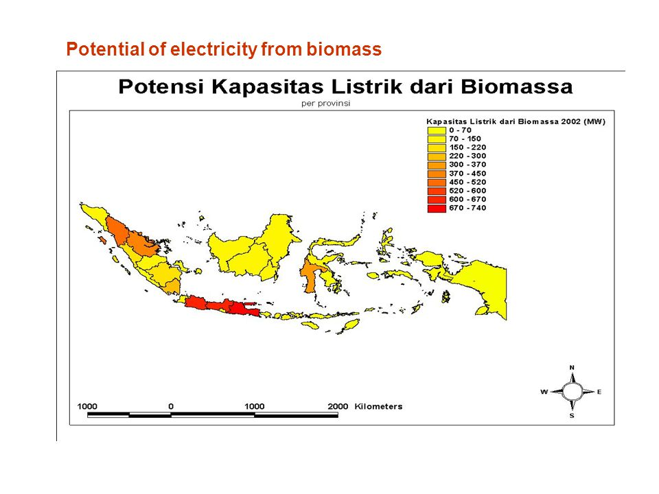 Potential of electricity from biomass