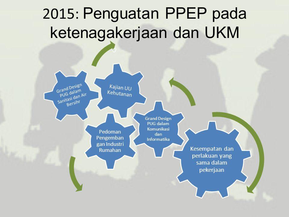 2015: Penguatan PPEP pada ketenagakerjaan dan UKM