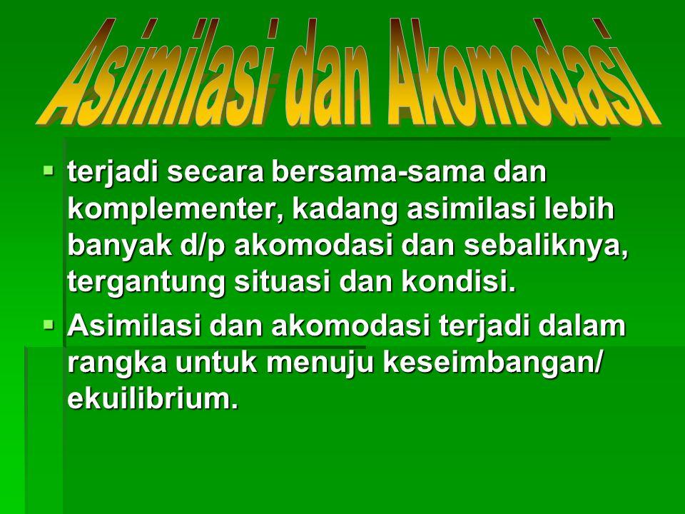 Asimilasi dan Akomodasi