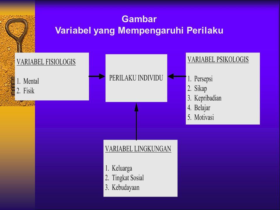 Variabel yang Mempengaruhi Perilaku