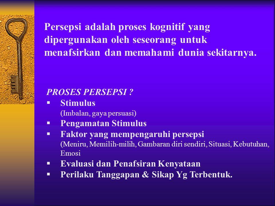 Persepsi adalah proses kognitif yang dipergunakan oleh seseorang untuk menafsirkan dan memahami dunia sekitarnya.