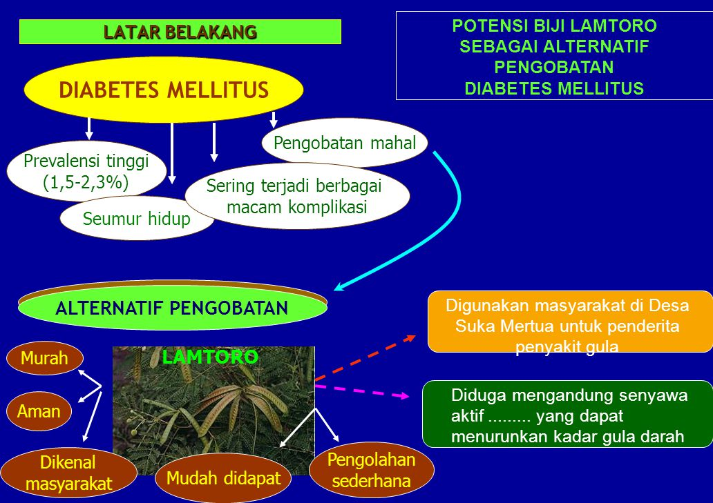 DIABETES MELLITUS ALTERNATIF PENGOBATAN ALTERNATIF PENGOBATAN LAMTORO