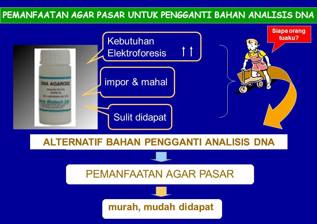 MASALAH PEMANFAATAN AGAR PASAR Kebutuhan Elektroforesis impor & mahal