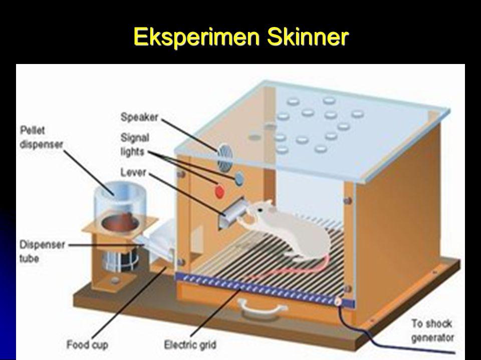 Eksperimen Skinner by FH