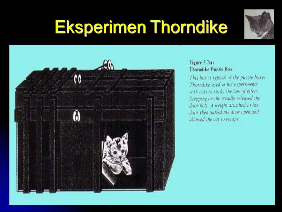 Eksperimen Thorndike by FH
