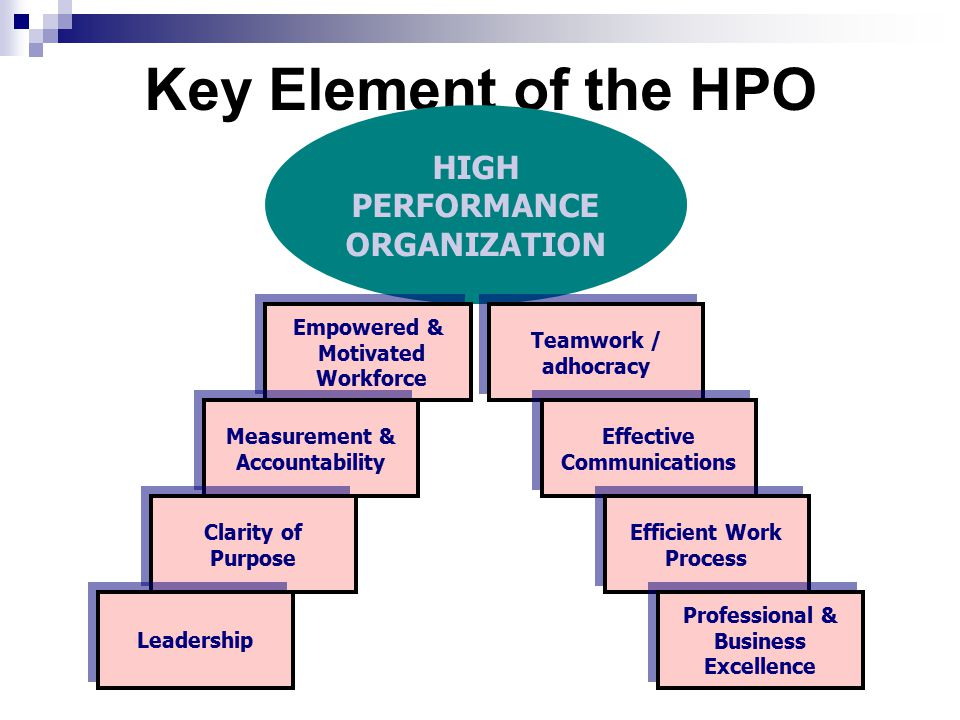 Key Element of the HPO HIGH PERFORMANCE ORGANIZATION Empowered &