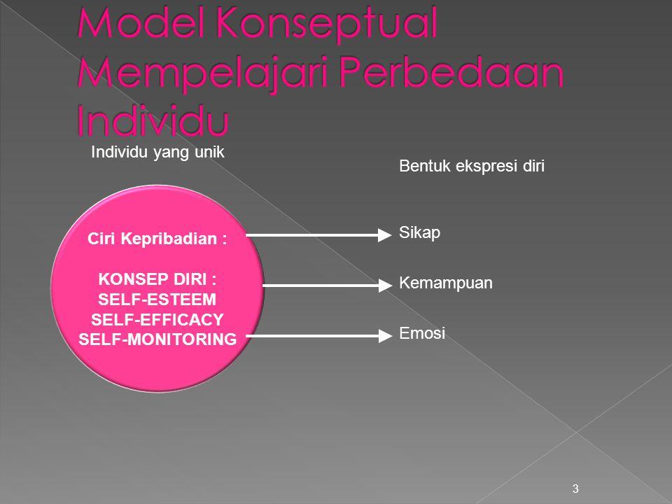 Model Konseptual Mempelajari Perbedaan Individu