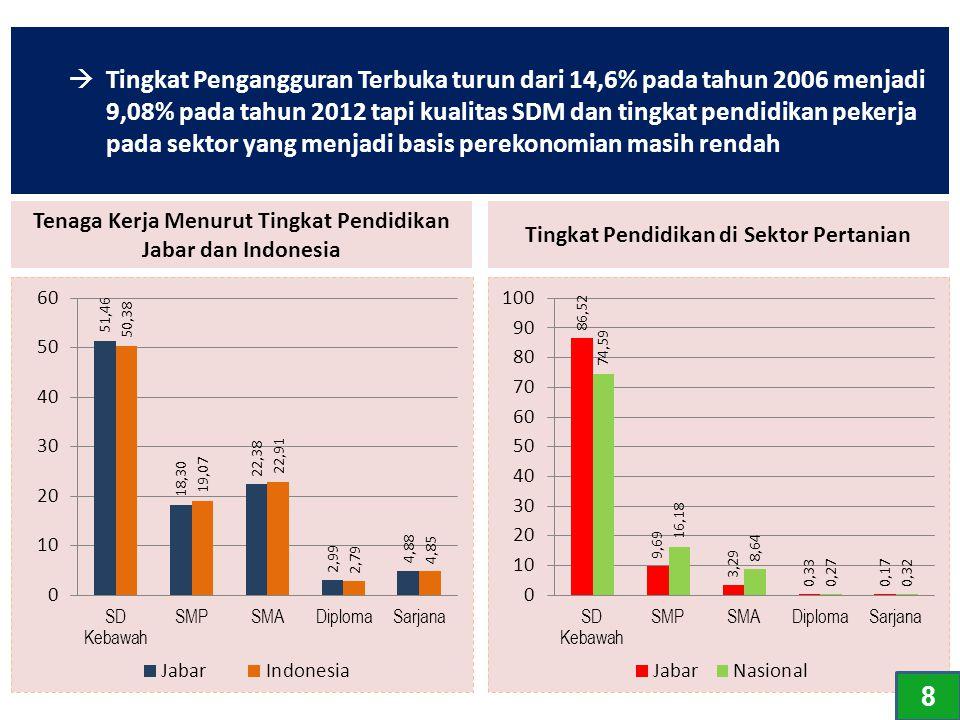 Tingkat Pengangguran Terbuka turun dari 14,6% pada tahun 2006 menjadi 9,08% pada tahun 2012 tapi kualitas SDM dan tingkat pendidikan pekerja pada sektor yang menjadi basis perekonomian masih rendah