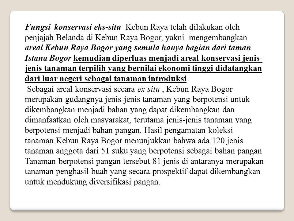 Fungsi konservasi eks-situ Kebun Raya telah dilakukan oleh penjajah Belanda di Kebun Raya Bogor, yakni mengembangkan areal Kebun Raya Bogor yang semula hanya bagian dari taman Istana Bogor kemudian diperluas menjadi areal konservasi jenis-jenis tanaman terpilih yang bernilai ekonomi tinggi didatangkan dari luar negeri sebagai tanaman introduksi.