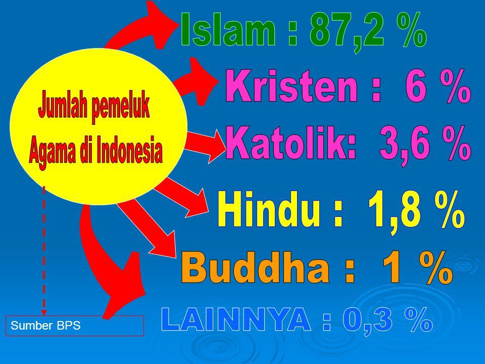 Islam : 87,2 % Kristen : 6 % Jumlah pemeluk Agama di Indonesia