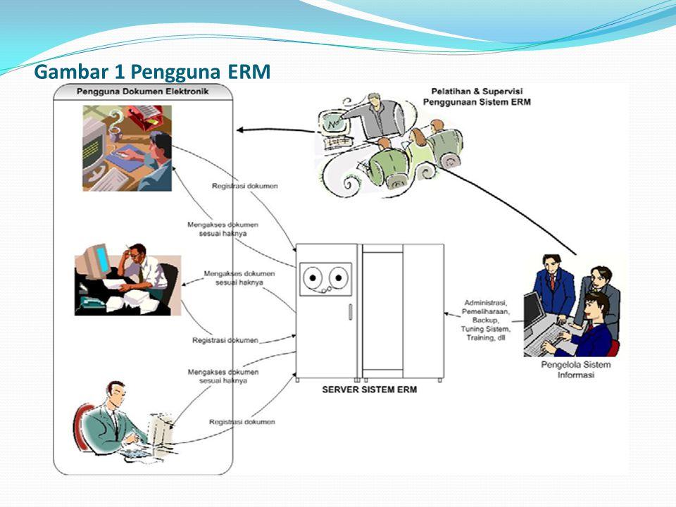 Gambar 1 Pengguna ERM