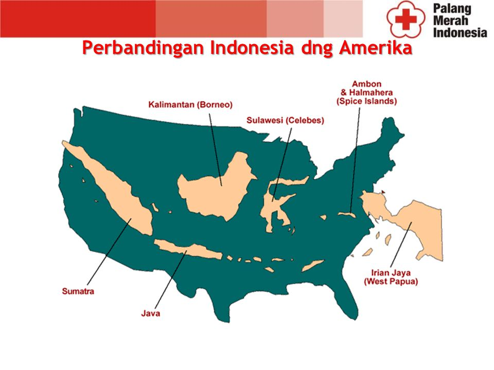 Perbandingan Indonesia dng Amerika