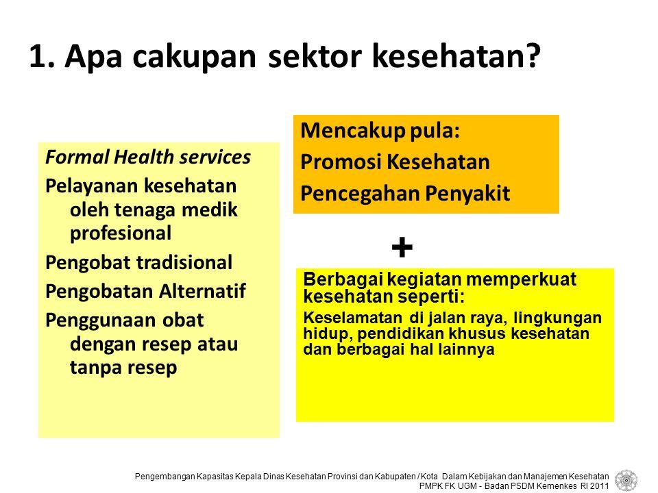1. Apa cakupan sektor kesehatan