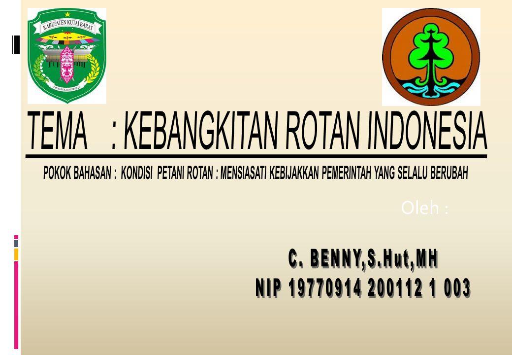 TEMA : KEBANGKITAN ROTAN INDONESIA