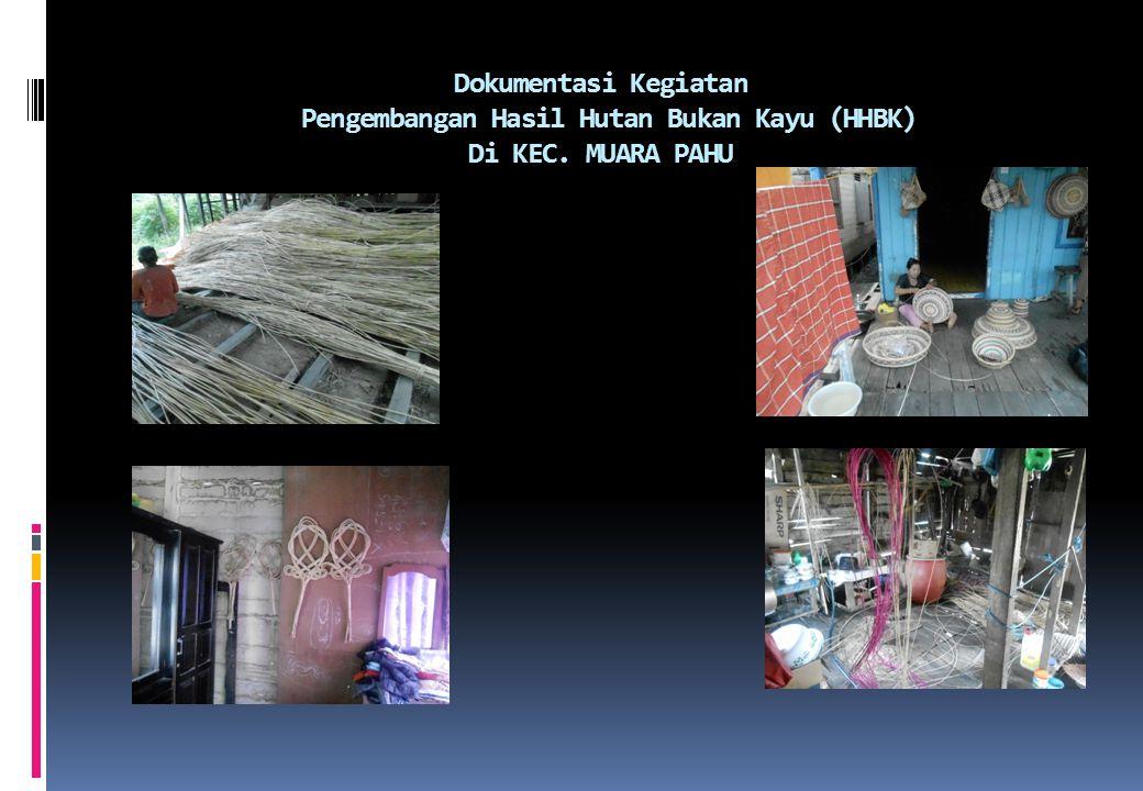 Dokumentasi Kegiatan Pengembangan Hasil Hutan Bukan Kayu (HHBK) Di KEC