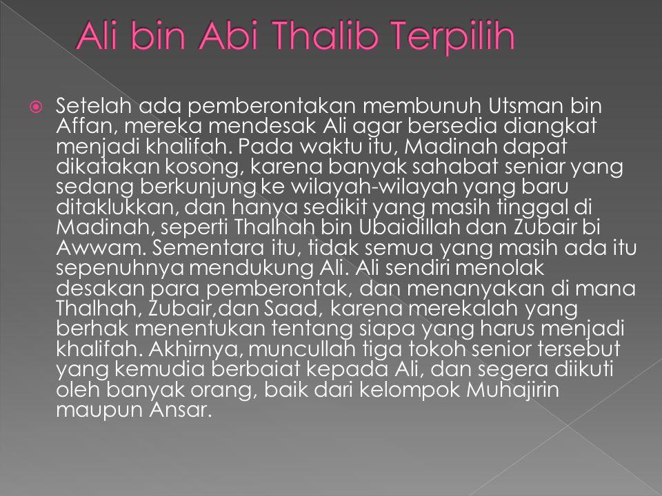 Ali bin Abi Thalib Terpilih