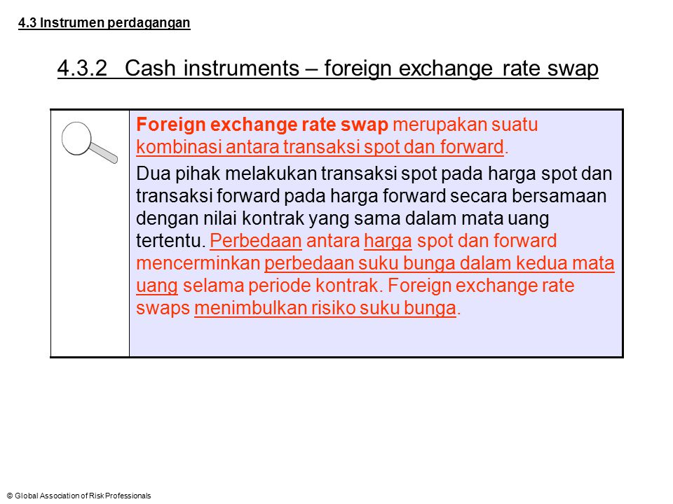 4.3.2 Cash instruments – foreign exchange rate swap