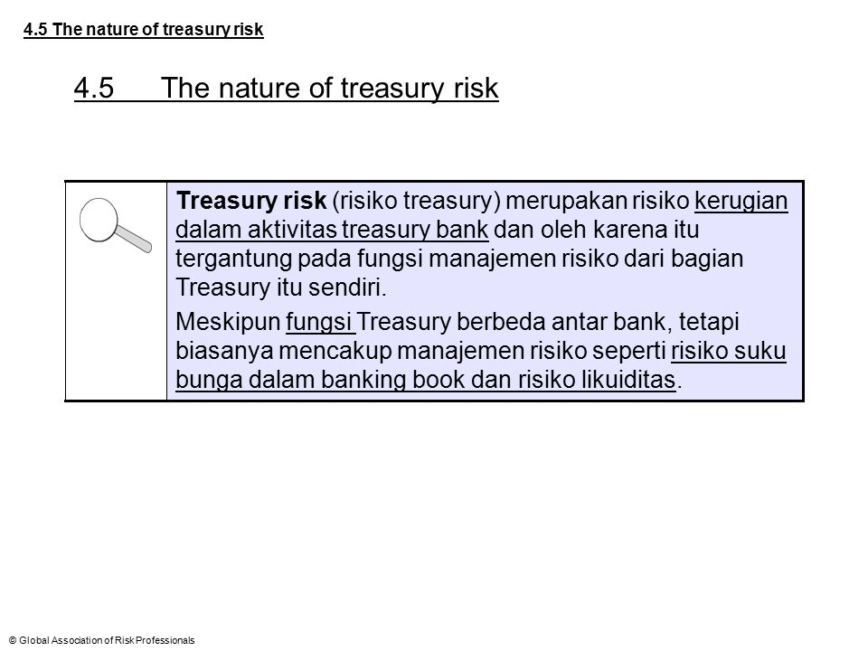 4.5 The nature of treasury risk