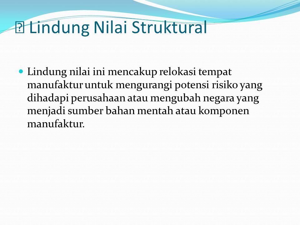  Lindung Nilai Struktural