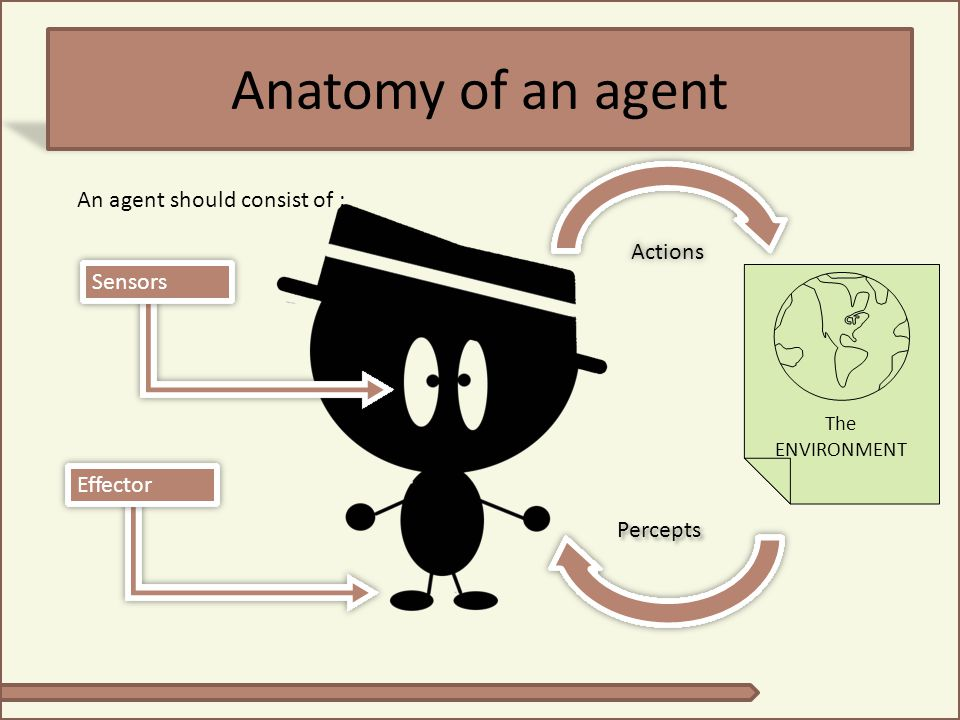 Anatomy of an agent An agent should consist of : Actions Sensors