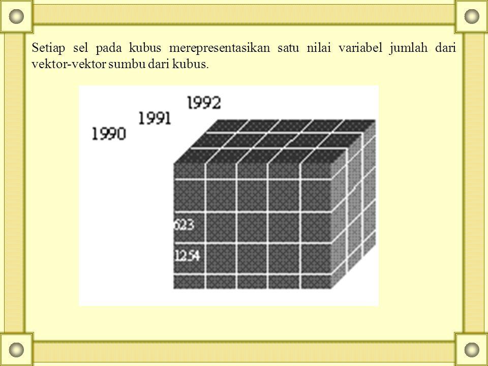 Setiap sel pada kubus merepresentasikan satu nilai variabel jumlah dari vektor-vektor sumbu dari kubus.