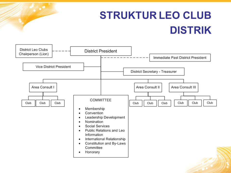 STRUKTUR LEO CLUB DISTRIK