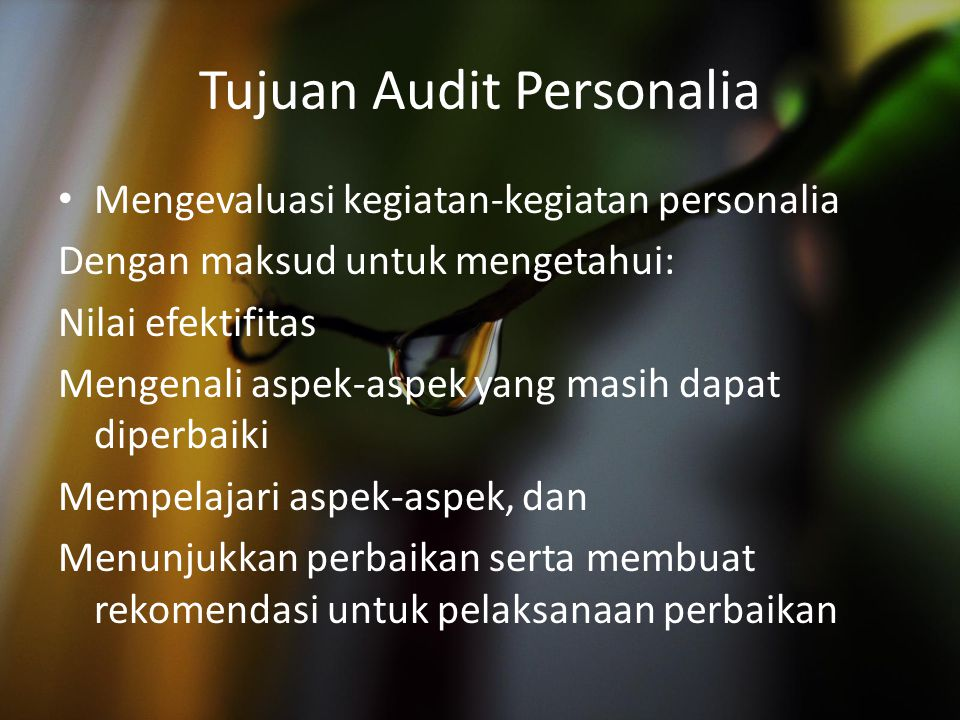 Tujuan Audit Personalia