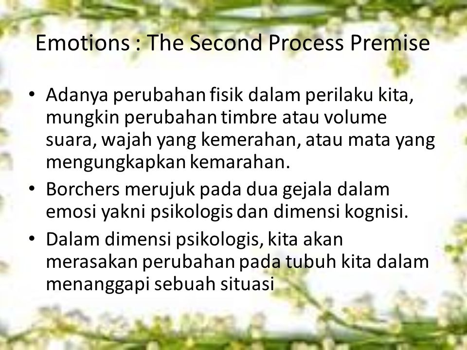 Emotions : The Second Process Premise