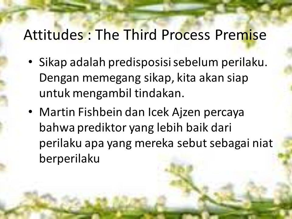 Attitudes : The Third Process Premise