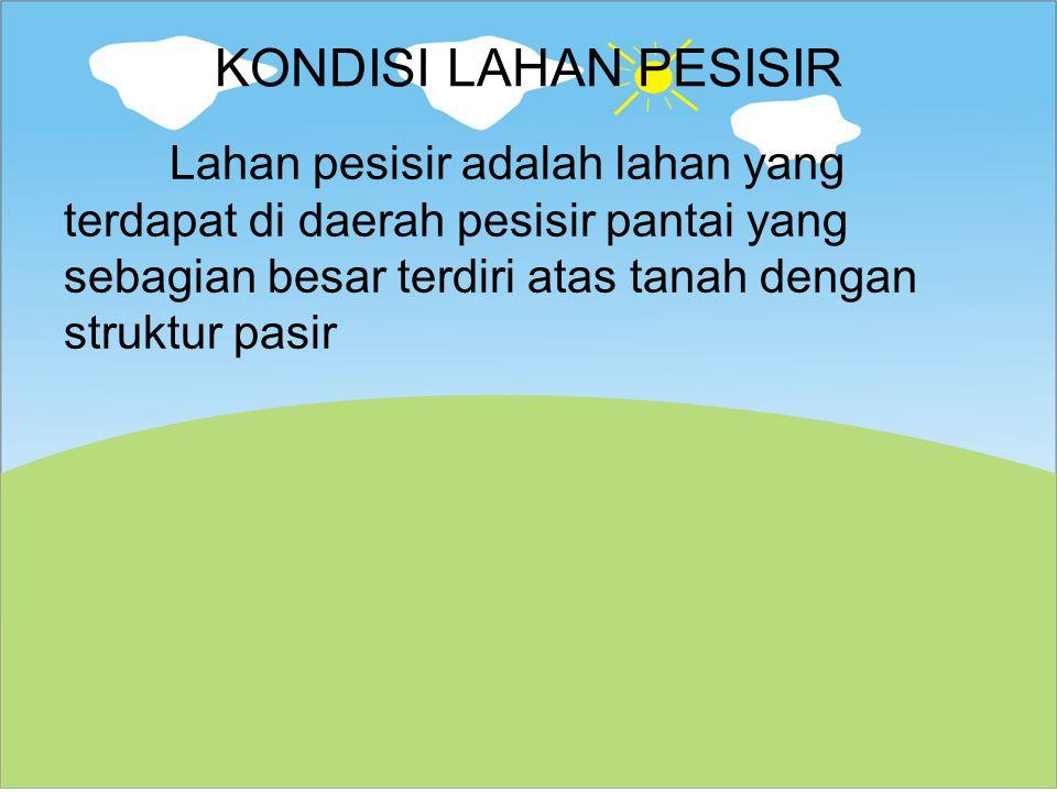 KONDISI LAHAN PESISIR Lahan pesisir adalah lahan yang terdapat di daerah pesisir pantai yang sebagian besar terdiri atas tanah dengan struktur pasir.