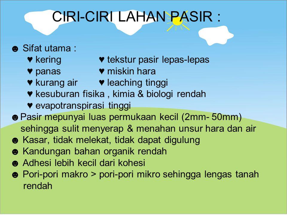CIRI-CIRI LAHAN PASIR :