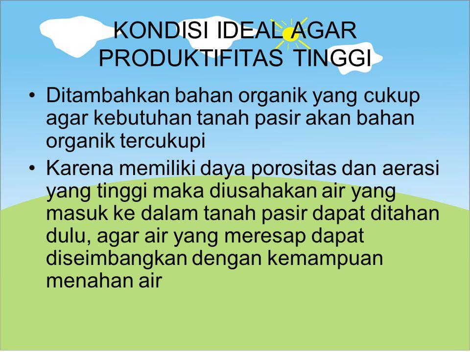 KONDISI IDEAL AGAR PRODUKTIFITAS TINGGI