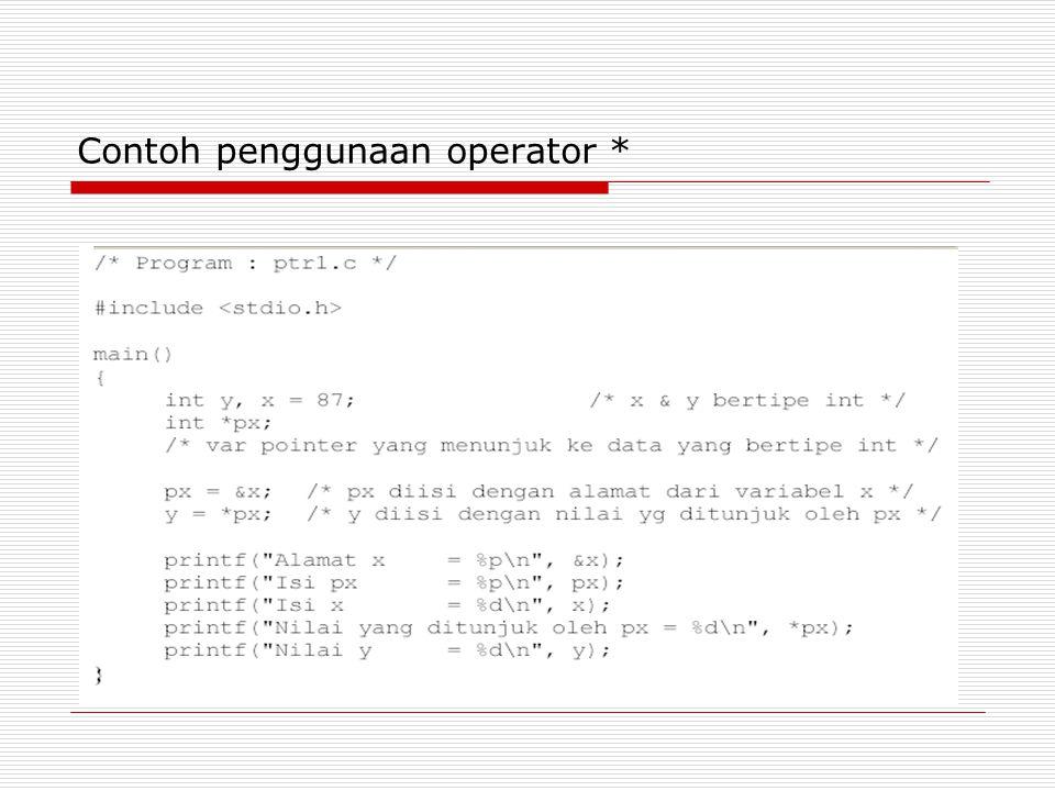 Contoh penggunaan operator *
