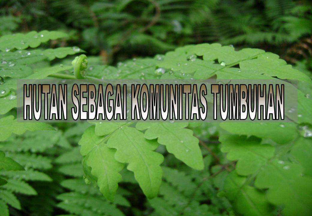 HUTAN SEBAGAI KOMUNITAS TUMBUHAN