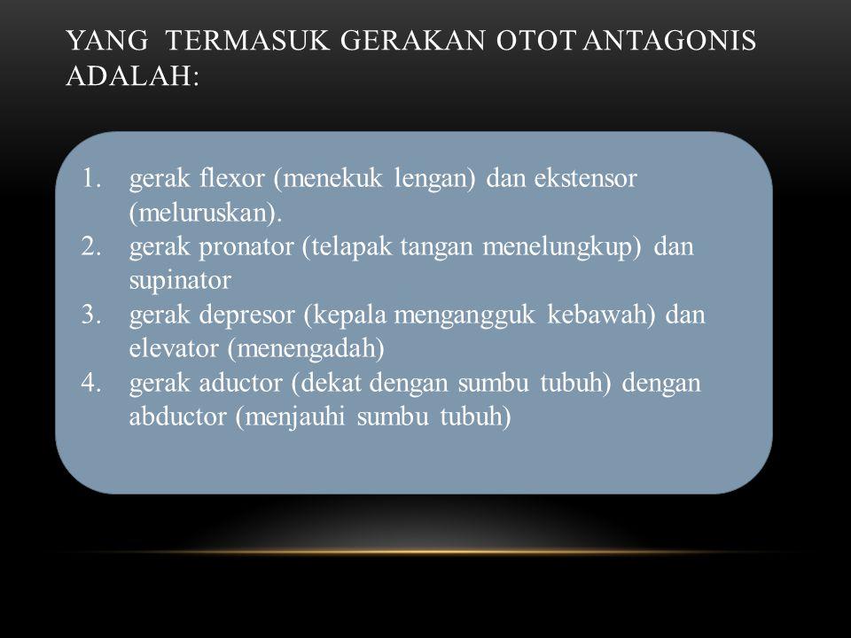 Yang termasuk gerakan otot antagonis adalah: