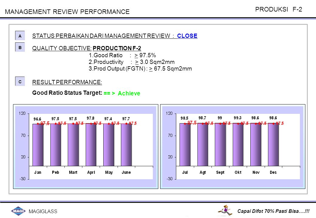 MANAGEMENT REVIEW PERFORMANCE