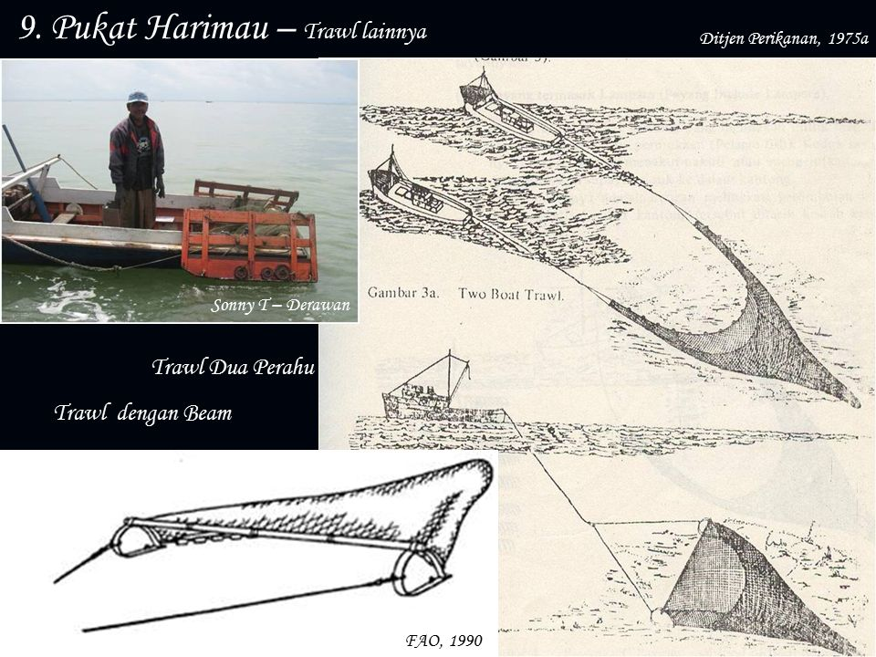 9. Pukat Harimau – Trawl lainnya