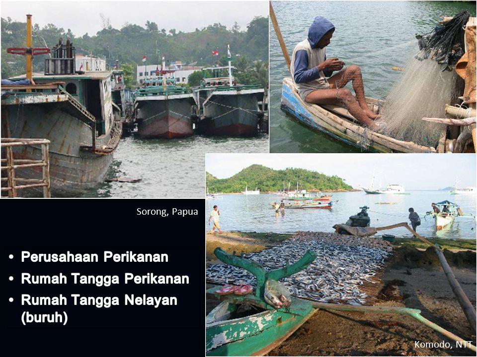 Rumah Tangga Perikanan Rumah Tangga Nelayan (buruh)