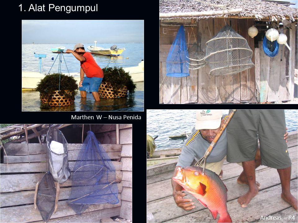 1. Alat Pengumpul Marthen W – Nusa Penida Andreas – R4 Alat Pengumpul: