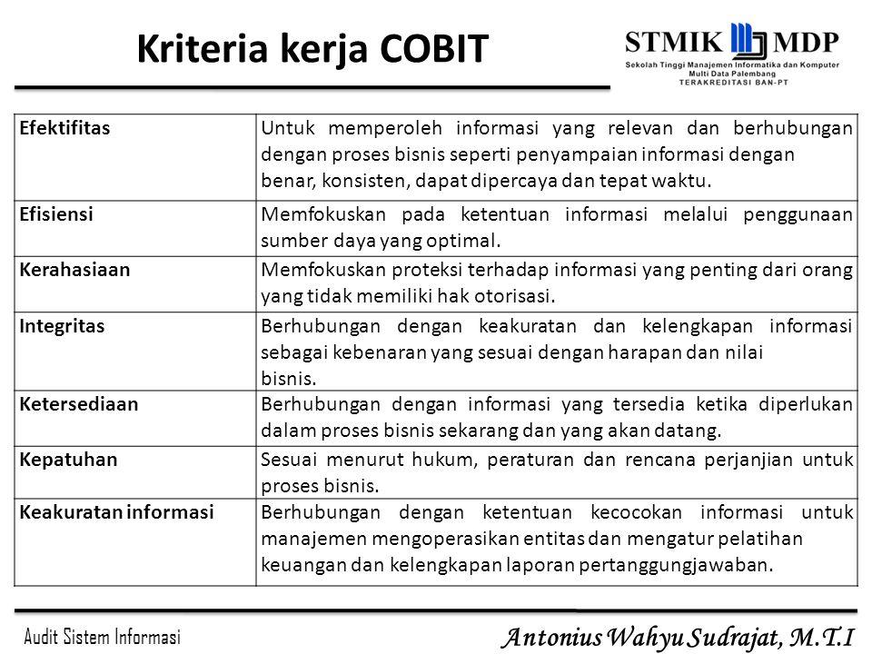 Kriteria kerja COBIT Efektifitas