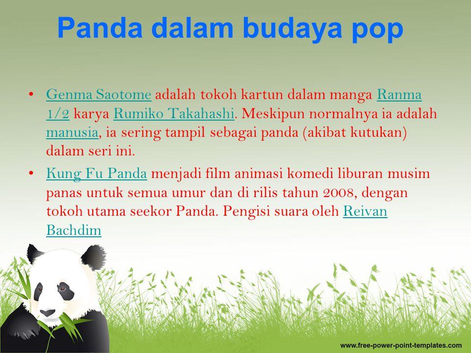 Panda dalam budaya pop
