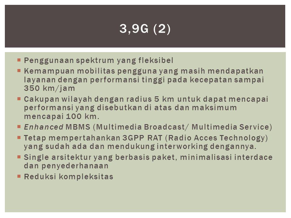 3,9G (2) Penggunaan spektrum yang fleksibel