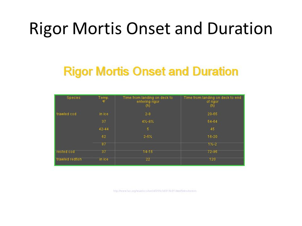 Rigor Mortis Onset and Duration