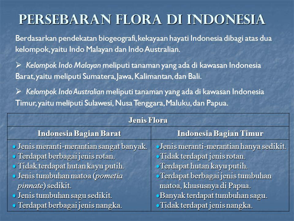 PERSEBARAN FLORA DI INDONESIA