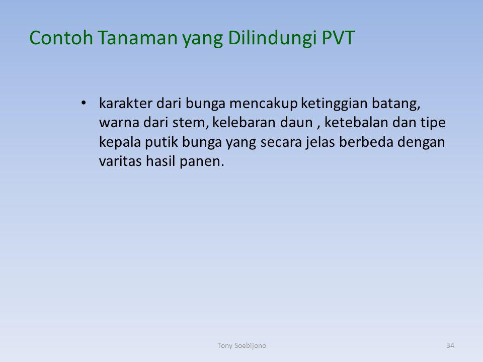 Contoh Tanaman yang Dilindungi PVT