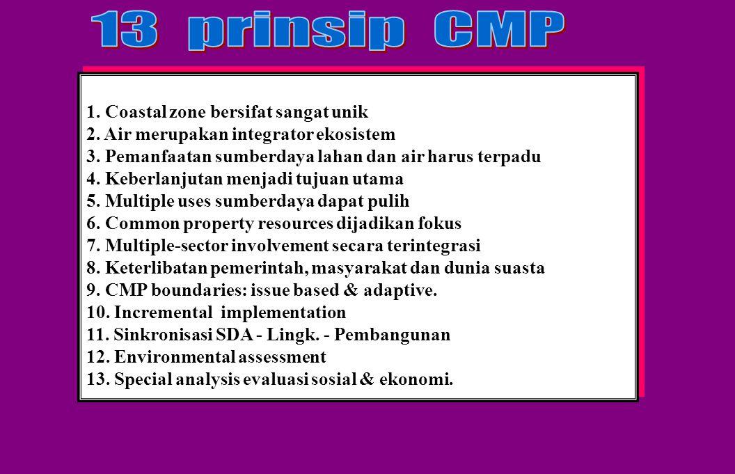 13 prinsip CMP 1. Coastal zone bersifat sangat unik
