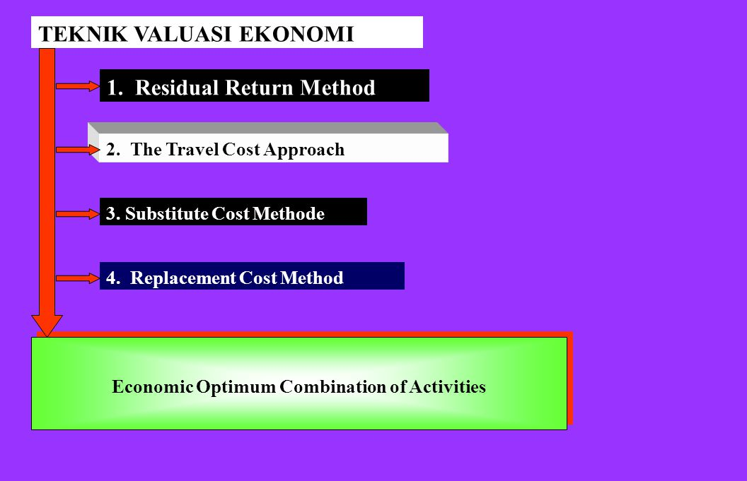 Economic Optimum Combination of Activities