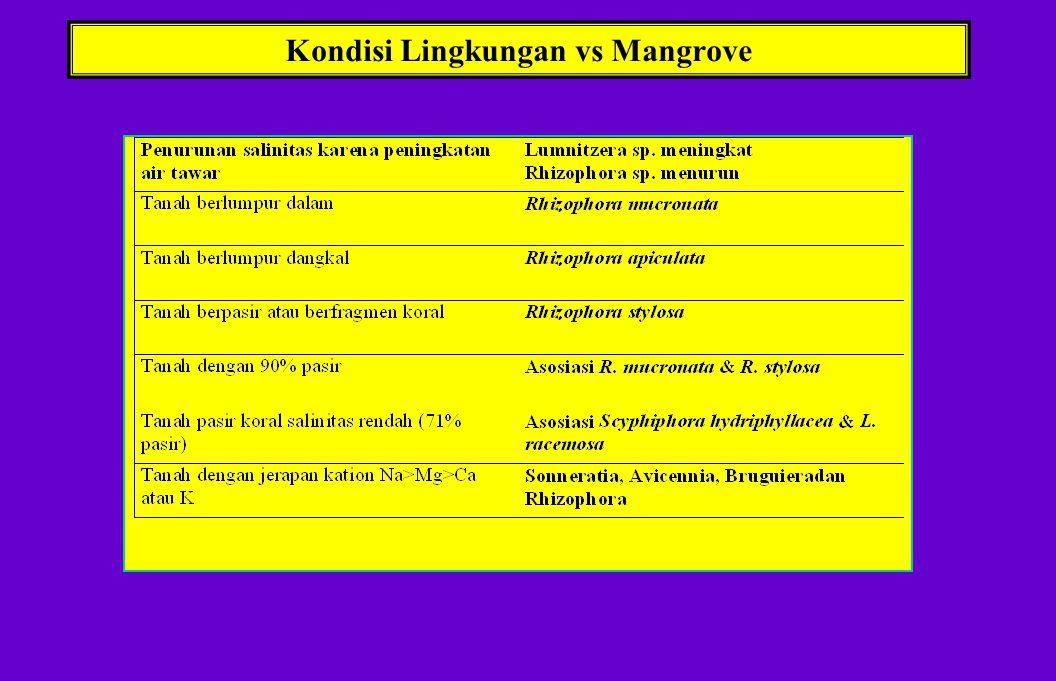 Kondisi Lingkungan vs Mangrove