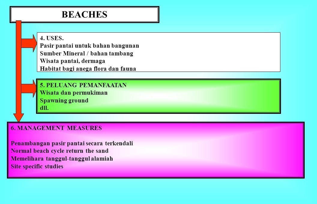 BEACHES 4. USES. Pasir pantai untuk bahan bangunan